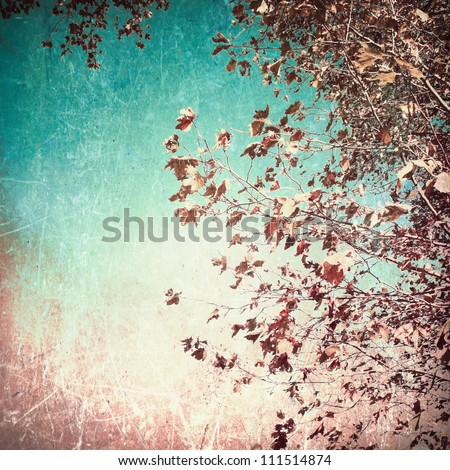 Fall leaves in a blue textured sky - stock photo