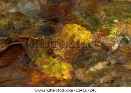 Fall Leaves Under Clear Stream Water, Shenandoah National Park, Virginia, USA - stock photo