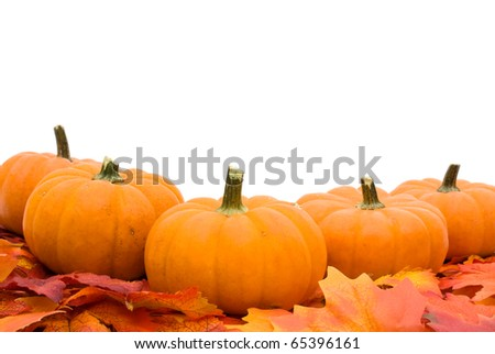 Fall leaves with a pumpkin isolated on a white background, fall leaves border - stock photo