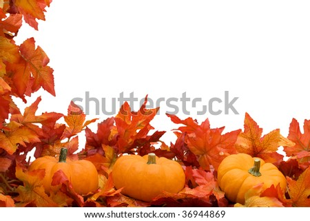Fall leaves with orange gourds on isolated on a white background, fall border