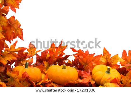 Fall leaves with pumpkin on white background, fall harvest