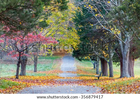 Fall Pathway