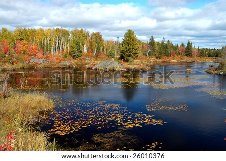 Fall pond scene in Northern Ontario