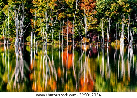 Fall reflections and a flooded forest at Monksville Reservoir, Hewitt, New Jersey, USA - stock photo