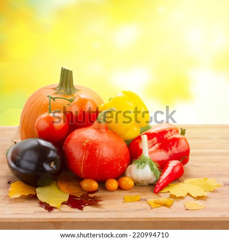 fall ripe of colorful vegetables  on table in yellow garden - stock photo