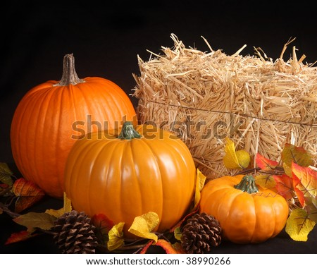 Fall scene on a black background