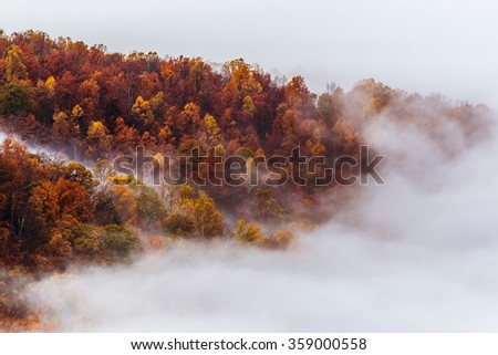 Fall Season in Shenandoah - stock photo