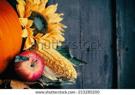 Fall Still Life Closeup with Apple, Corn, Sunflower, Pumpkin on side of Dark Rustic Wood Board Background with room or space for copy, text, your words.  Horizontal trendy cross process - stock photo