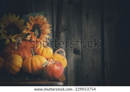 Fall Still Life Sitting on a Chair against Rustic Barn Wood Wall Background with room or space for copy, text, your words.  Horizontal with moody, dark vintage light - stock photo