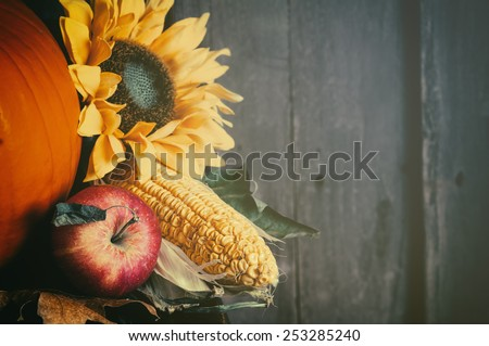 Fall Still Life with apple, corn on cob, sunflower, pumpkin on side of warm rustic wood board background with room or space for copy, text, your words.  Horizontal trendy faded cross process - stock photo