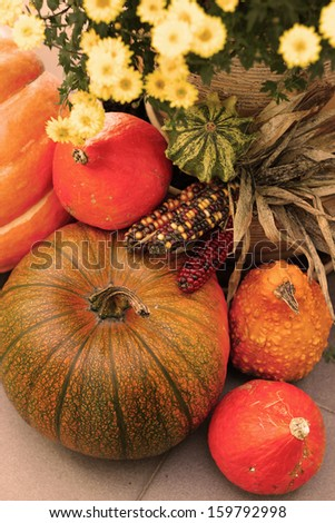 Fall terrace decorations with pumpkin, lot of flowers and other decor objects