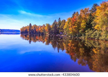 Fall trees with reflection - stock photo