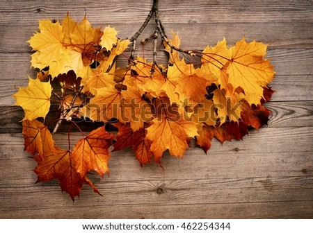 Fall wallpaper. Fall wallpaper with autumn leaves on wooden background. Fall wallpaper with color autumn leaves. Fall wallpaper,  vintage style.