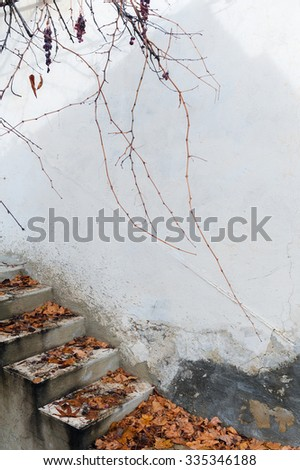 Fall was the stairs. Autumn in Cyprus - stock photo