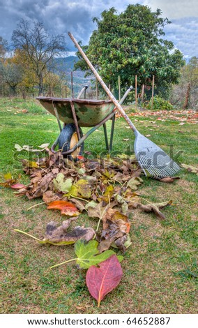 Fall - Wheelbarrow,rake and fallen leaves - stock photo