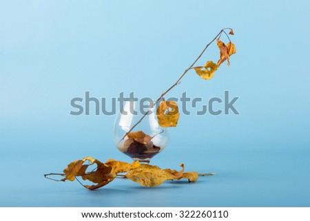 Fallen autumn leaves with glass - stock photo