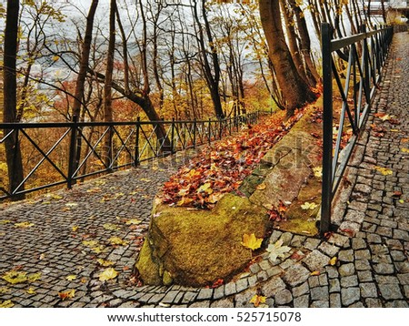 fallen colorful leaves on paved path with handrails leading to Usti nad Labem city in evening autumnal Czech Republic