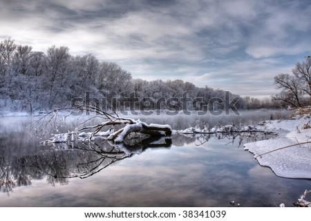 fallen tree in winter river - stock photo