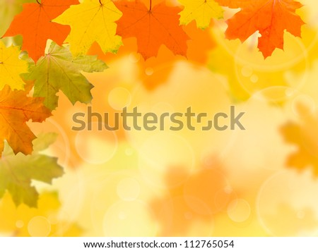 falling autumn red and yellow leaves on a blurred background - stock photo
