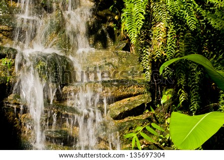 Falling clean fresh water in bright Ecuador Sun with green plants - stock photo