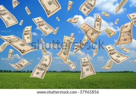 Falling dollars (field background) - stock photo