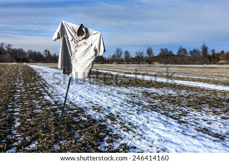 fallow cornfield in winter with scarecrow - stock photo