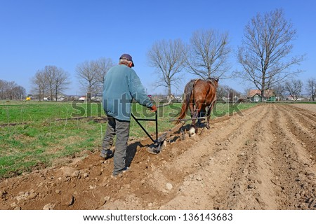 Fallowing of a spring field by a manual plow on horse-drawn.
