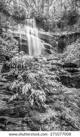 Falls Branch Falls, TN B&W - stock photo