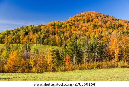 Falls foliage in Vermont mountain - stock photo