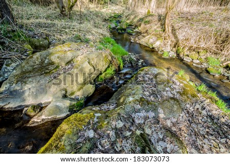 Falls on the small mountain river in a wood in spring