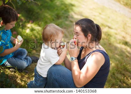 Family eating apples at the orchard - stock photo