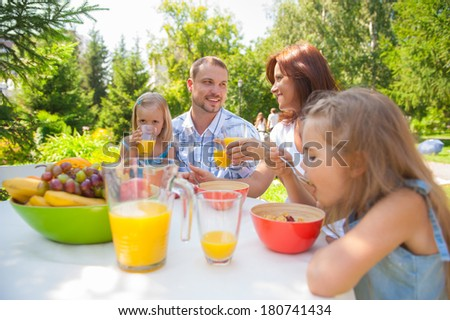 Family eating together outdoors at summer park or backyard - stock photo