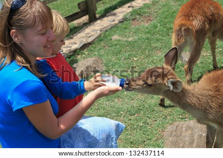 family feeding goat with milk bottle at a farm - stock photo
