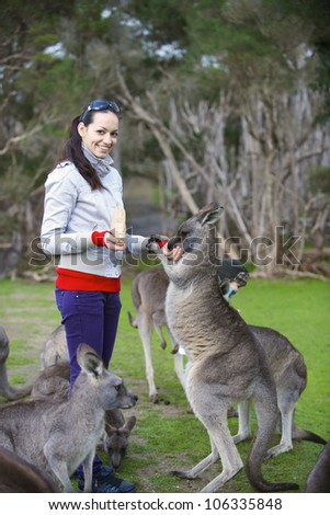 Family feeding kangaroos in Phillip Island Wildlife Park, Australia
