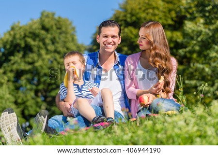 Family having picnic sitting in grass on meadow