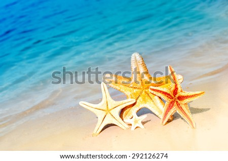 Family holiday concept - starfish walking on summer beach against ocean background - stock photo