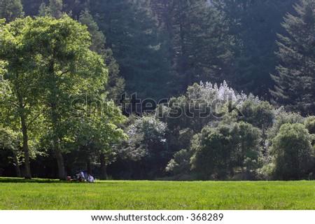 Family is having picnic in the park - stock photo