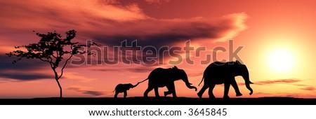 Family of elephants - stock photo