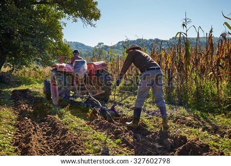 Family of peasant harvesting potatoes with a tractor and plough