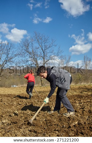 Family of peasants covering the rows of cultivated potatoes - stock photo