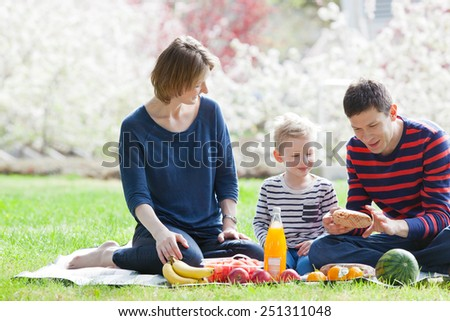 family of three at the picnic in the park at spring - stock photo