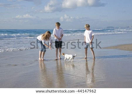Family playing with dog on the beach - stock photo