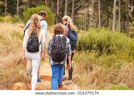 Family walking on a trail into a forest, back view - stock photo