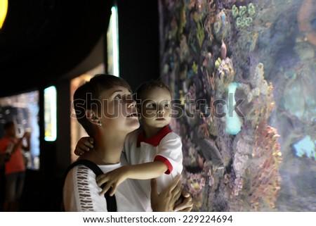 Family watchig fishes at a big aquarium - stock photo
