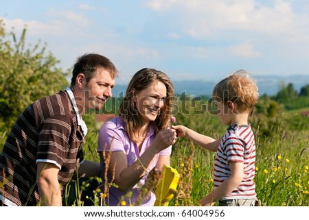 Family with a little boy playing in the grass on a summer meadow - stock photo