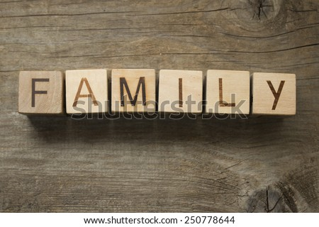 family word on a wooden blocks - stock photo