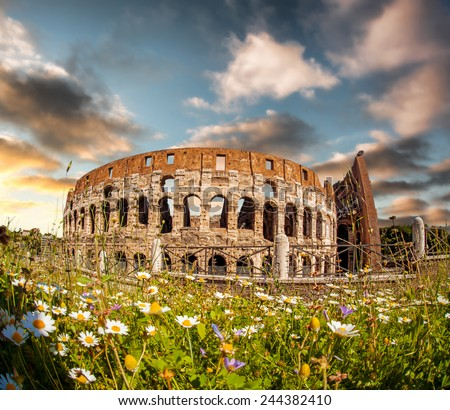 Famous Colosseum with flowers in Rome, Italy - stock photo