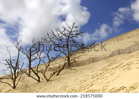 Famous dune of Pyla, the highest sand dune in Europe, in Pyla Sur Mer, France. - stock photo