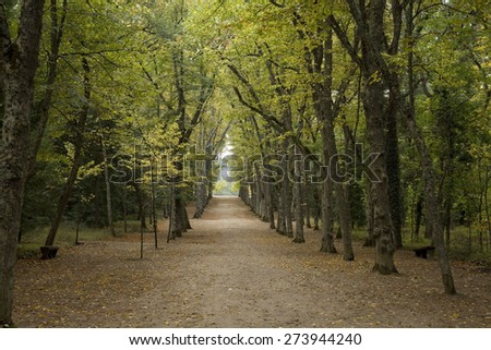 Famous gardens of La Granja of San Ildefonso in Segovia, Spain. In autumn season. Historical gardens. A perspective path.