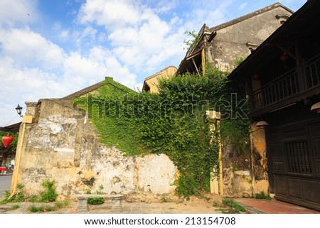 Famous old wall with creeping fig (or climbing fig) at Hoi An Ancient Town in early morning sunshine, Quang Nam, Vietnam. Hoi An is recognized as a World Heritage Site by UNESCO. - stock photo